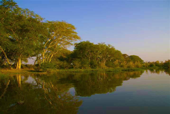 Liwonde National Park on the Shire River