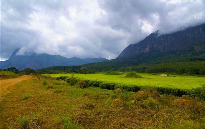 Mount Mulanje Massif