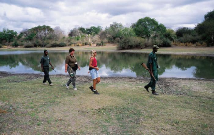 A walk through Selous Game Reserve