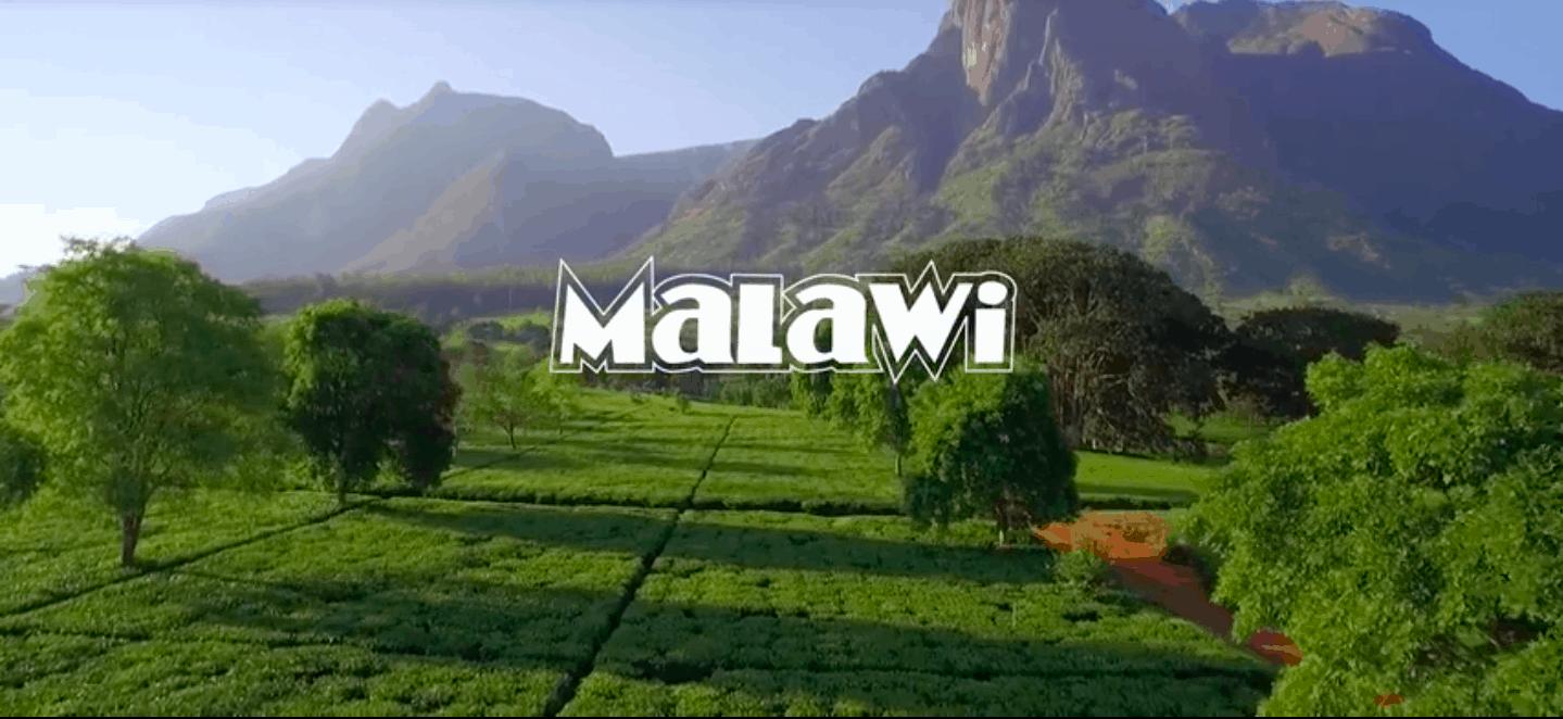 Malawi Video