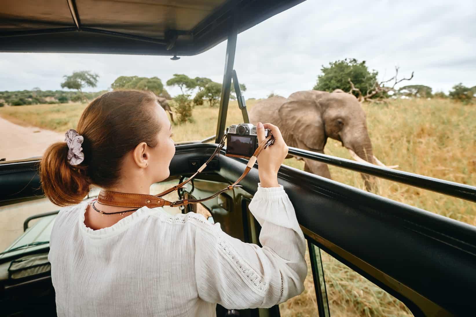 safari experience jackson african safari - picture